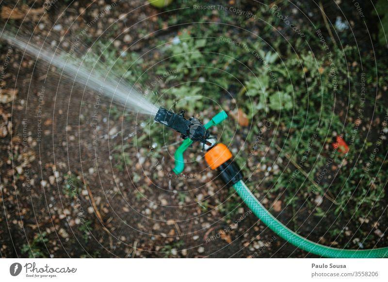 Garten-Bewässerungssprinkler bestäuben Sommer Frühling Wasser Gartenarbeit Farbfoto Schlauch Wasserschlauch Gärtner nass grün Gartenschlauch Natur Tag