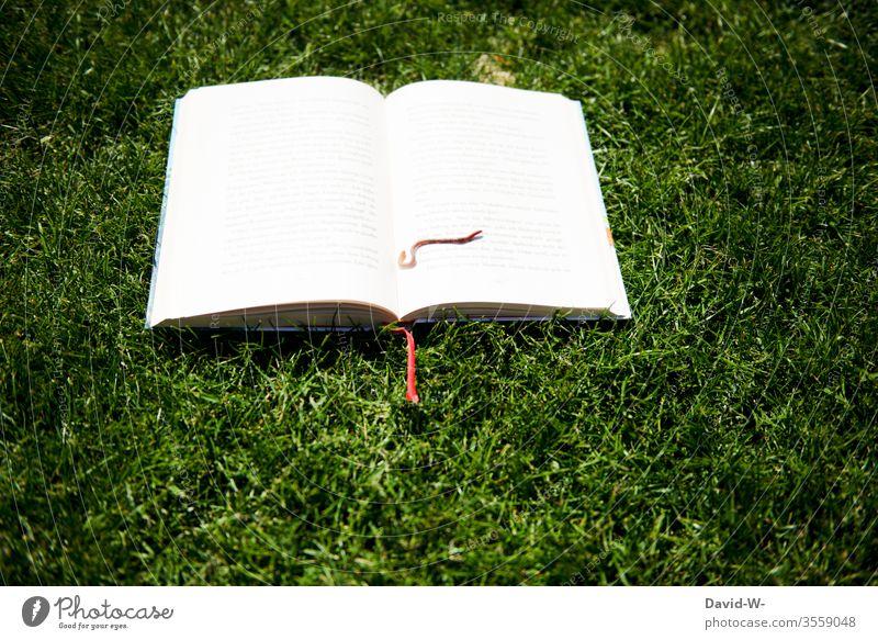 Bücherwurm | wörtlich genommen Buch Wurm Buecherwurm bücher lesen Lesestoff Buchstaben Buchseite draußen Rasen liegen Regenwurm Natur Garten Naturliebe