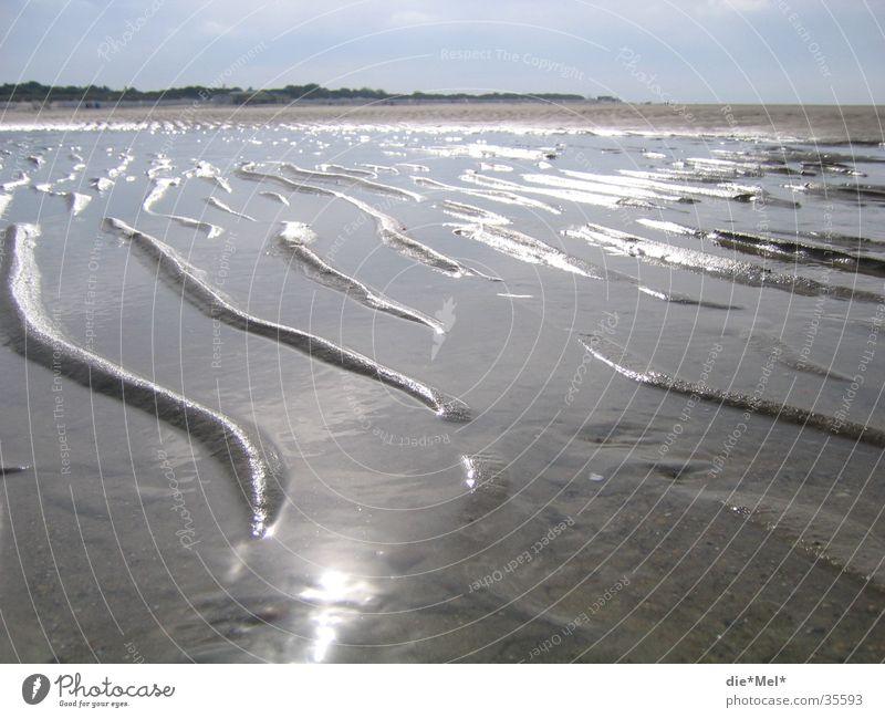 Sandwellen Strand Wellen Meer grau Reflexion & Spiegelung ruhig Ferien & Urlaub & Reisen Niederlande Algen siel Stranddüne Sonne Wasser Landschaft hell