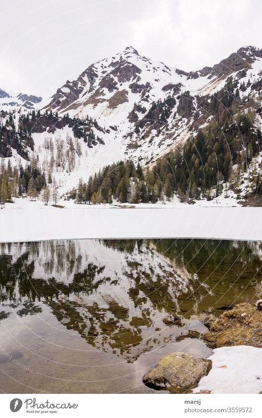 Spiegelung eines Berges im Duisitzkarsee Bergsee Berge u. Gebirge Spiegelung im Wasser Österreich wandern Ausflug Ausflugsziel Tourismus stilles Wasser Stille