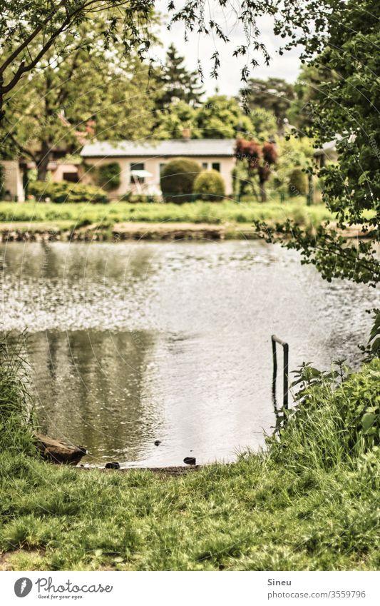 Haus am See Wochendhaus Wassergundstück Gebäude Havel Fluss Flussufer Seeufer Steg Anlegestelle Reflexion & Spiegelung Natur Landschaft Umwelt natürlich