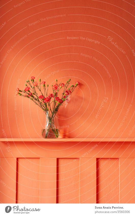 Warme Farben wohnen Blumenstrauß Vase Wohnung Wand wandfarbe bunt farbenfroh Sommer orange-rot Innenaufnahme Inneneinrichtung Architektur Innenarchitektur