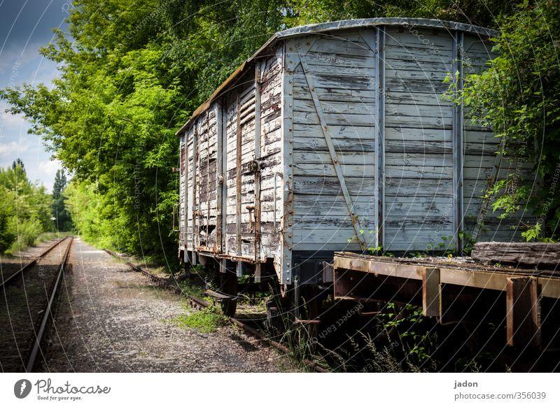 ausrangiert und abgeschoben. alt Senior Holz Verkehr Tourismus Eisenbahn Güterverkehr & Logistik historisch Vergangenheit Verfall Gleise trashig Handel