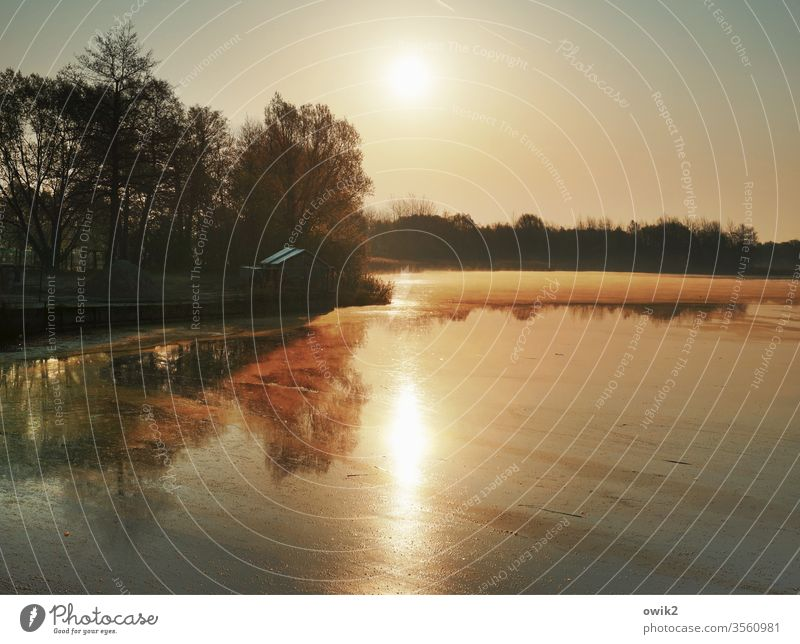 Zeitig aufstehen Panorama (Aussicht) See Wasser Morgen Morgenstimmung Sonne Sonnenaufgang Sonnenlicht Schönes Wetter Bäume Silhouette Landschaft