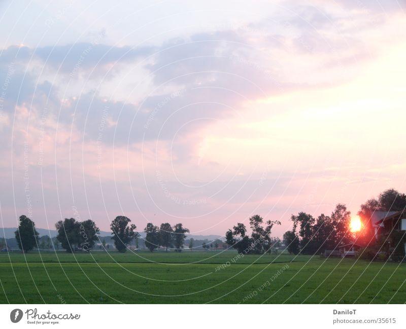 sun goes down Himmel Baum Sonne Wolken Abenddämmerung