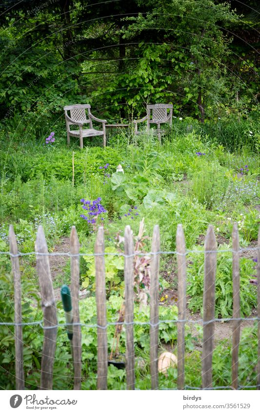 Idyllischer Bauerngarten mit Staketenzaun und gemütlicher Sitzgelegenheit Garten Kräutergarten biologisch Gemüsegarten Natur Sitzecke Stühle staketenzaun Idylle