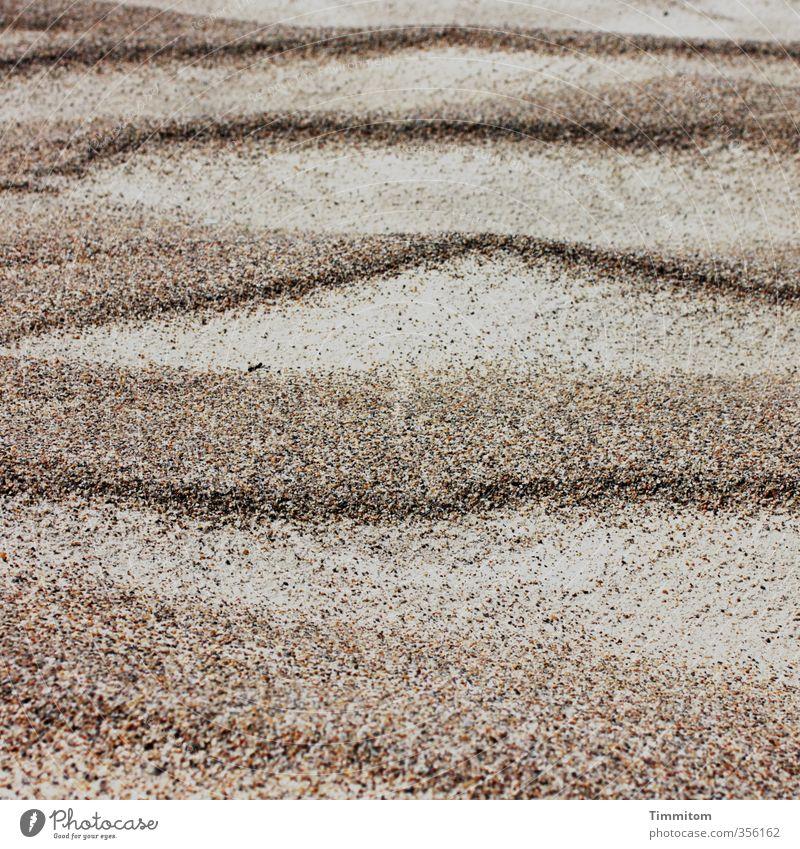 Gestaltung. Ferien & Urlaub & Reisen grün Strand Umwelt Sand natürlich Linie braun ästhetisch einfach Nordsee Dänemark Wellenform