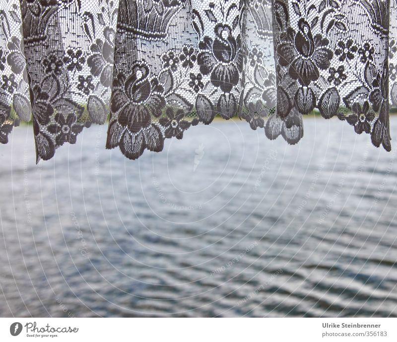 Tüll / AST 5 Brandenburg schön Wasser Pflanze Blume Frühling Innenarchitektur Autofenster Stil See Wellen Tourismus Häusliches Leben Design