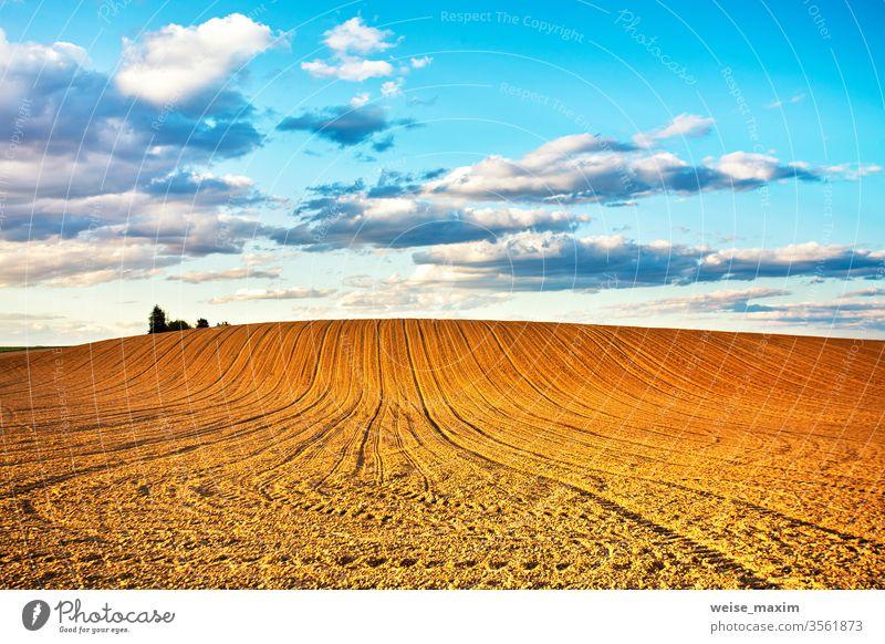 Linear gepflügter Ackerbau auf Hügeln Feld Land anbaufähig ländlich Natur Landschaft Frühling Ackerland Furche Bauernhof Schmutz Boden kultiviert Hintergrund