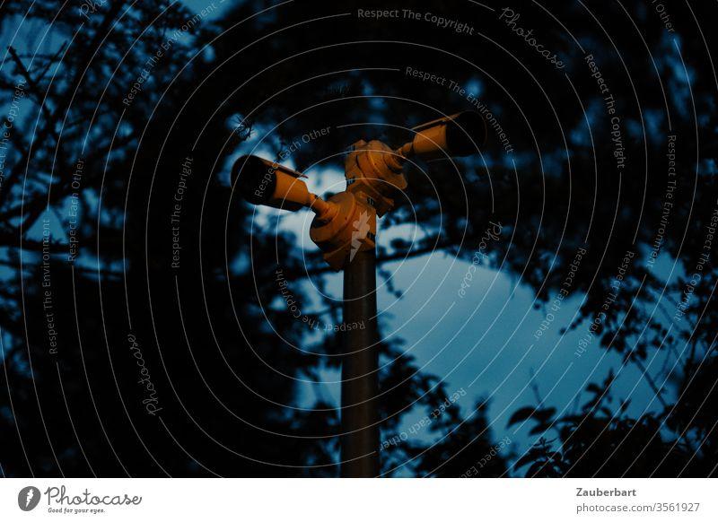 Unheimliche Überwachungskameras vor dunklen Bäumen Kamera Video Videoüberwachung Baum Wald Dunkelheit Abend Nacht unheimlich Angst beängstigend Alarm