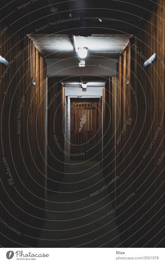 Gang im Keller eines Mehrfamilienhauses mit vielen hölzernen Kellertüren dunkel Holz düster unheimlich Wohnhaus Tür Schatten Kellerabteil Lampe Menschenleer