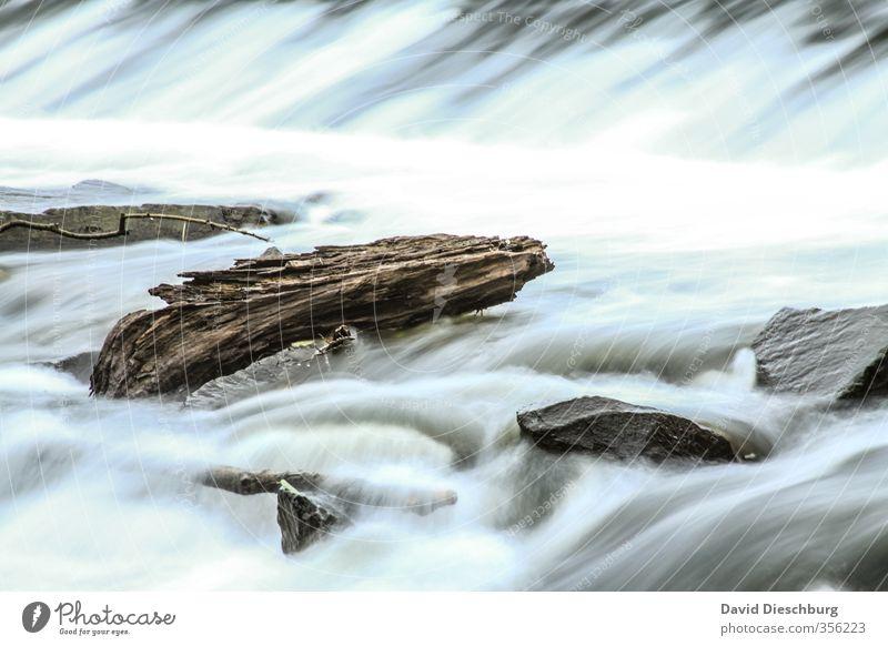 Treibholz Ferien & Urlaub & Reisen Natur Landschaft Wasser Frühling Sommer Herbst Schönes Wetter Wellen Küste Flussufer Bach Wasserfall blau braun schwarz weiß