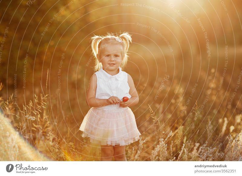 kleines Mädchen mit zwei Schwänzen. hübsches kleines Baby in einem rosa Rock. Das Mädchen geht bei Sonnenuntergang im Park spazieren wenig Kind Porträt Frühling