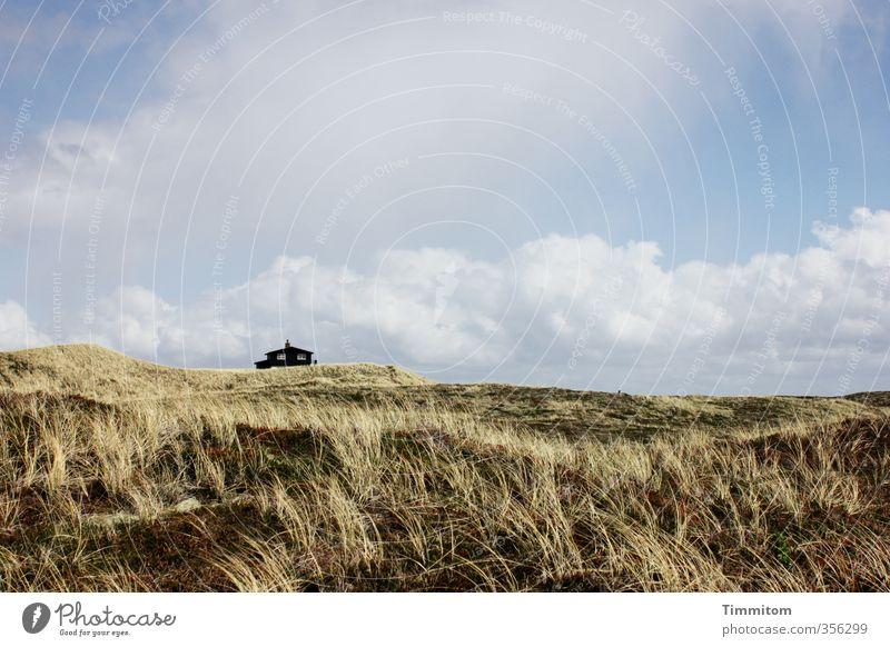 Abstand. Ferien & Urlaub & Reisen Umwelt Landschaft Pflanze Himmel Wolken Schönes Wetter Nordsee Düne Dänemark Haus Ferienhaus Gefühle Geborgenheit ruhig