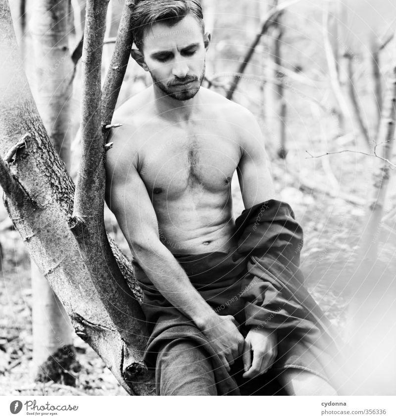 Waldmann VI Mensch Natur Jugendliche schön Sommer Männlicher Akt Baum ruhig Junger Mann 18-30 Jahre Erotik Wald Umwelt Erwachsene Leben Gesundheit
