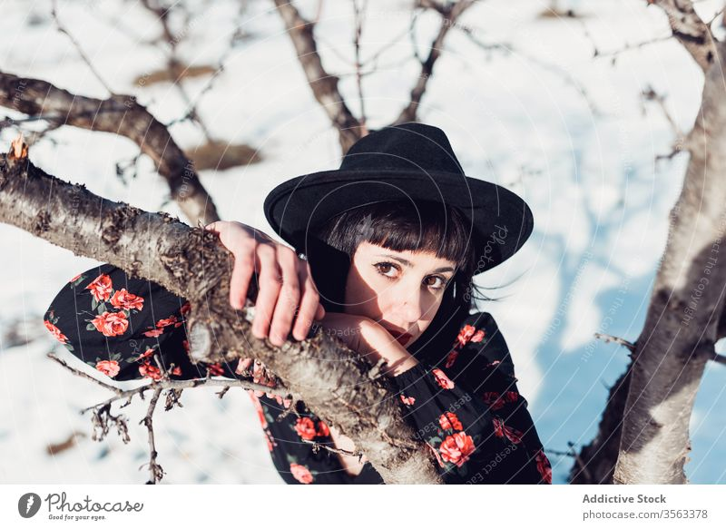 Charmante Frau im Wintergarten Stil Mode schön Baum Garten Park Schnee Hut jung brünett Natur trendy Windstille sich[Akk] entspannen ruhig charmant Dame