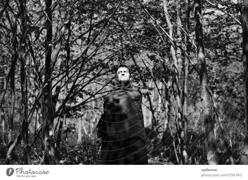 Waldmann II Mensch Natur Jugendliche schön Baum Erholung Landschaft ruhig Junger Mann 18-30 Jahre Umwelt Erwachsene Gesicht Leben Stil
