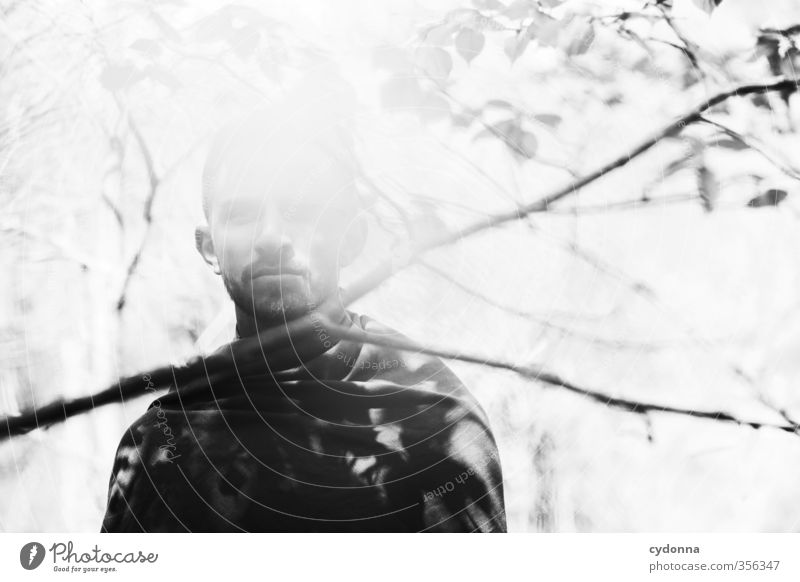Waldmann III elegant Stil exotisch Erholung ruhig Abenteuer Mensch Junger Mann Jugendliche Leben 18-30 Jahre Erwachsene Umwelt Natur Sommer Baum einzigartig