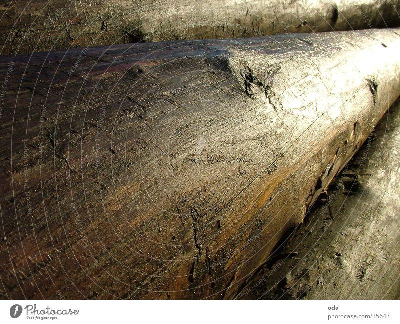 Baumstämme Holz nass feucht Baumstamm Stapel