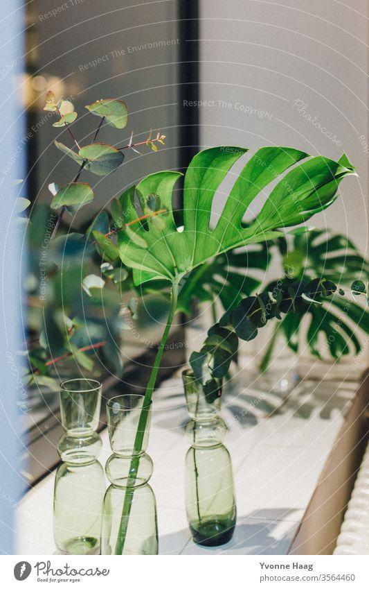 Monsterra Blatt und Eukalyptus farbenfroh Liebe Geburtstag Muttertag Geschenk Teppich orientalisch Blumenmuster Blumentopf Blumenstrauß Frühling Valentinstag
