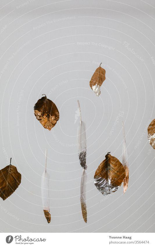 Blätter und Federn schweben in der Luft Schweben weiß Farbfoto goldrand silber fliegen fliegend weißer Hintergrund braun braune blätter Herbst herbstlich Wald