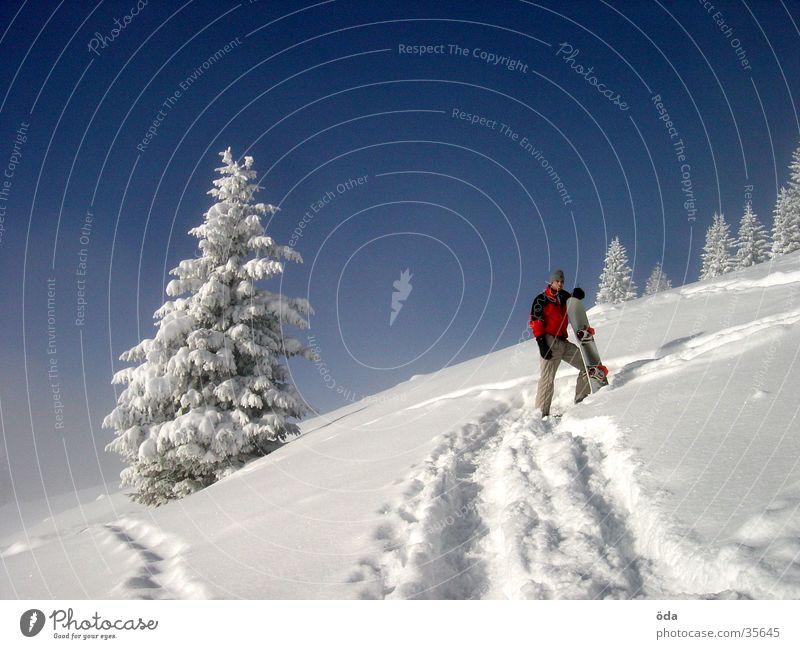 Winterimpression Ferien & Urlaub & Reisen Baum Schnee warten Schönes Wetter Pause Spuren aufwärts Schneelandschaft Blauer Himmel Berghang Snowboard Nadelbaum