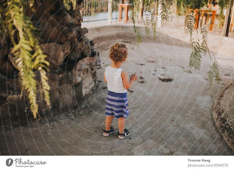 Kind steht unter einem Pfefferbaum in der Sonne Strand Himmel Küste Wolken Farbfoto Natur Wind Außenaufnahme Landschaft Wasser schlechtes Wetter Klima Umwelt