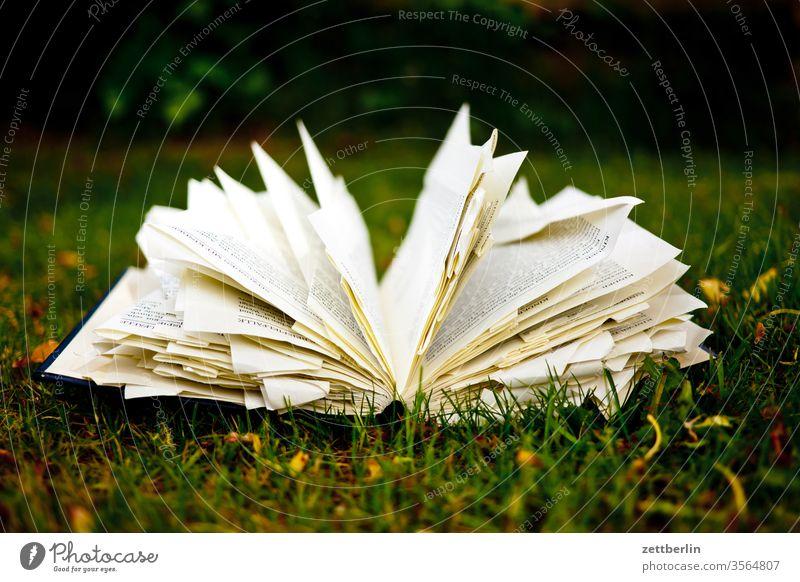 Buch auf der Wiese im Garten belletristik bibliothek buch eselsohr lesen lesestoff lesezeichen literatur roman schmökern studium garten wiese gras liegen