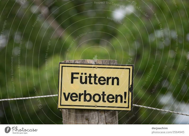"""VERBOTS- SCHILD """" Füttern verboten """" befestigt auf einem Holzfahl. Im Hintergrund viel Grün. Verbots Schild Farbfoto Außenaufnahme Schilder & Markierungen"""