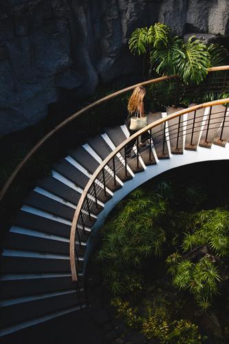 Junge Frau erklimmt schöne Treppe mit Vegetation nach oben Stein Sandsteinmauer minimalistisch Strukturen & Formen Muster Detailaufnahme Design Linien Farbfoto