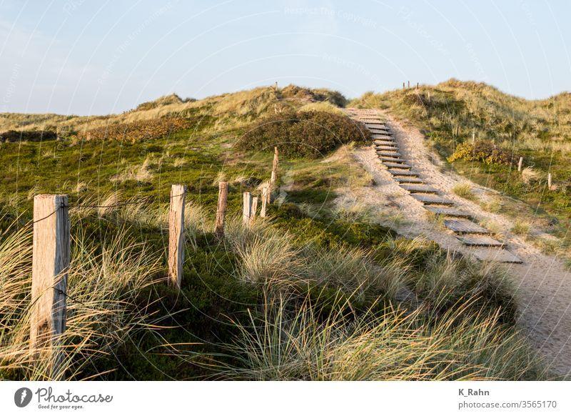 Weg zum Meer küste meer ozean sand schleswig-holstein stranden urlaub wetter zaun erholung friesland gras insel nordsee trampelpfad reisen sylt tourismus