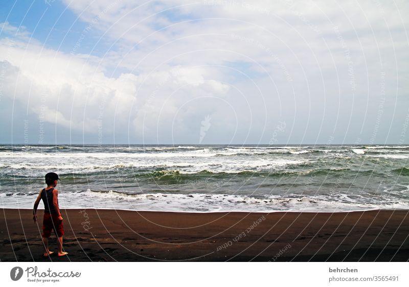 tag am meer costa rica besonders beeindruckend staunen Spielen Fröhlichkeit glücklich träumen Horizont Junge Kind Kindheit Zufriedenheit Glück Karibisches Meer