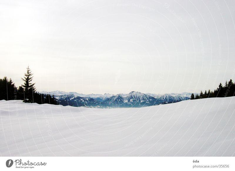Schneeberge Panorama (Aussicht) Winter kalt Ferne Berge u. Gebirge Perspektive groß