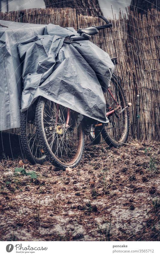 gefangen in plastik | sicherungsverwahrung Fahrrad Abdeckung Plane draußen Winter Reetzaun grau trüb abgestellt Schutz Winterquartier Campingplatz Regenschutz