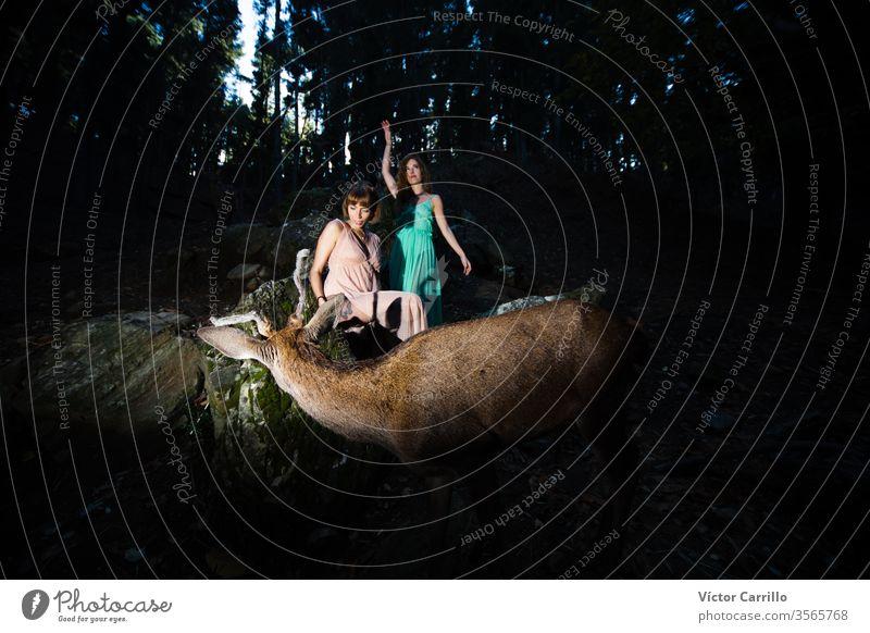 Zwei schöne böhmische Mädchen mit einem Hirsch im Waldhintergrund Freude Park Spaß Hirsche Freizeit hübsch cool stylisch Herbstlaub Kleid Romantik Land