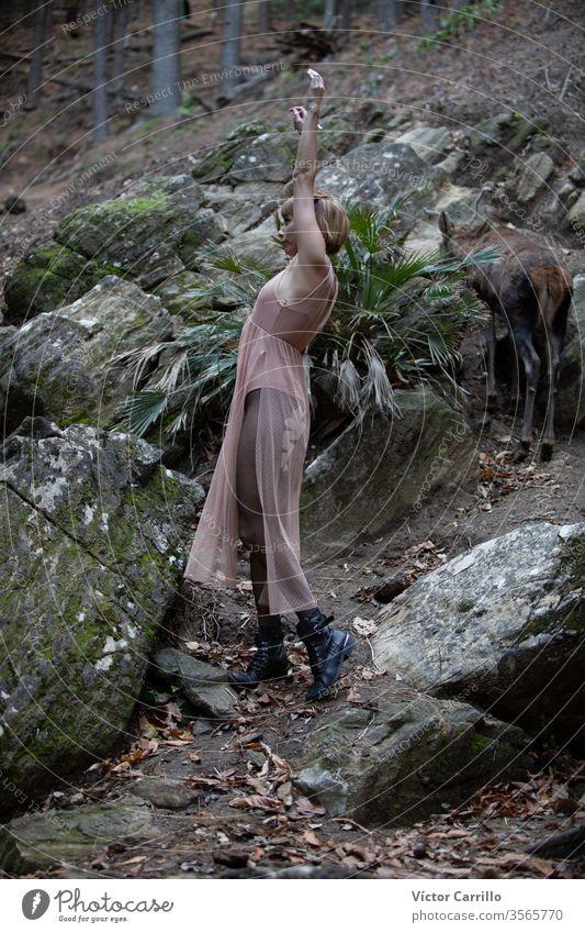 Ein junges, hübsches Boho-Mädchen tanzt in einem Waldhintergrund Sprit Glamour ethnisch frei Stehen Dame Bäume romantisch Holz posierend Frau Person Tribal