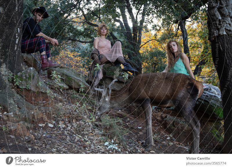 Zwei schöne böhmische Mädchen und ein junger Mann mit einem Hirsch im Waldhintergrund Freude Park Spaß Hirsche Freizeit hübsch cool stylisch Herbstlaub Kleid