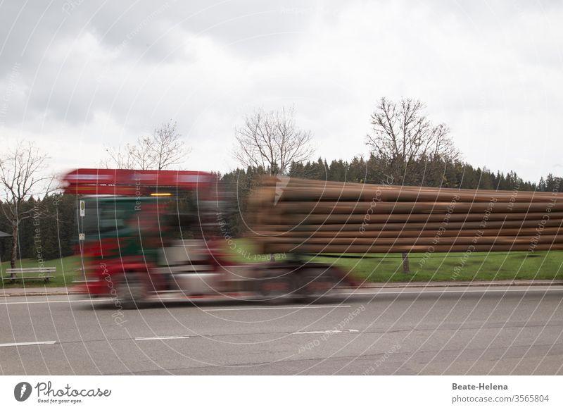 Rasant: Holztransporter fährt mit hoher Geschwindigkeit seine Ladung zum Zielort Transporter Außenaufnahme Straße schnell rasant Unschärfe Bewegung LKW-Anhänger