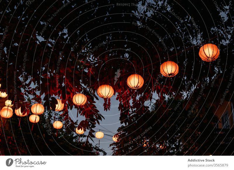 Asiatische Papierlaternen glühen abends auf der Straße Laterne leuchten asiatisch Abend Baum festlich Orientalisch Kultur Tradition hängen