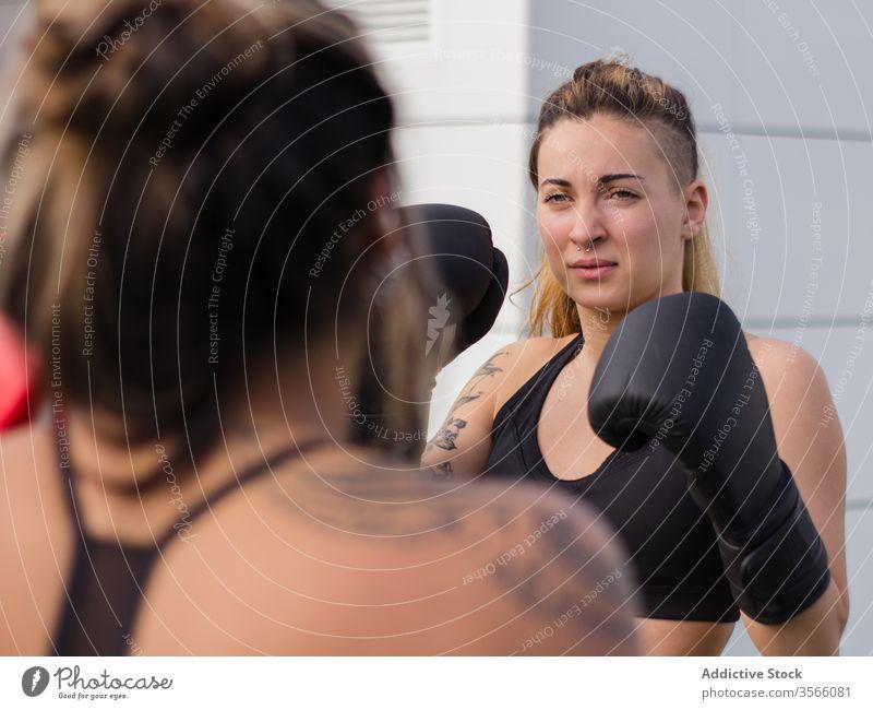 Entschlossenes Boxerinnen-Training auf der Straße Boxsport Handschuh Sportlerinnen Kämpfer Bowle Bestimmen Sie passen Sportpark aktive Kleidung Athlet Körper