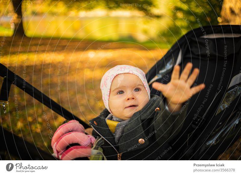 Ein einjähriges süßes Mädchen in schwarzem Kinderwagen staunte über das bunte Herbstlaub. Die Hand zum Anfassen ausstrecken Baby Ausdruck Park schlendern fallen