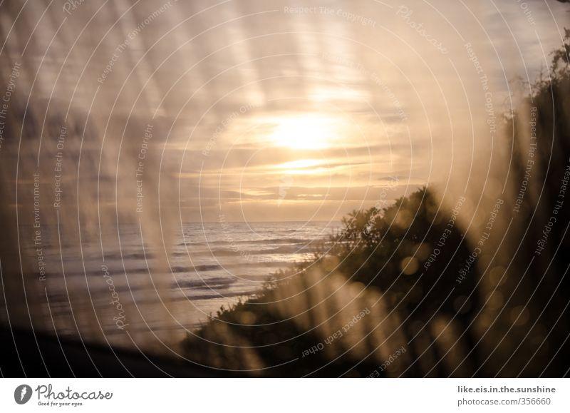 good morning sunshine Sinnesorgane Erholung ruhig Ferien & Urlaub & Reisen Tourismus Ausflug Abenteuer Freiheit Meer Umwelt Natur Landschaft Schönes Wetter