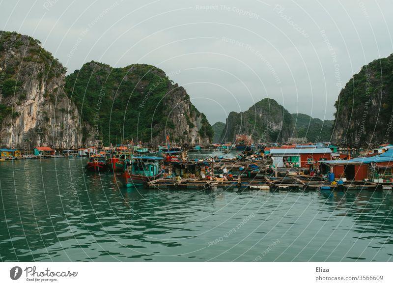 Schwimmendes Dorf in der Halong Bay in Vietnam schwimmendes Dorf floating village vietnam Halong Bucht Fischer bunt Leben auf dem Wasser Kalksteinfelsen Meer