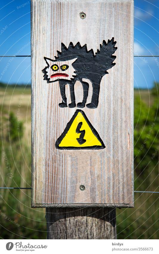 Lustige Warntafel welche vor der Gefahr von Stromschlägen warnt. elektrisierter Katze stehen die Haare zu Berge Elektrizität Stromschlag lustig Stromzaun Humor
