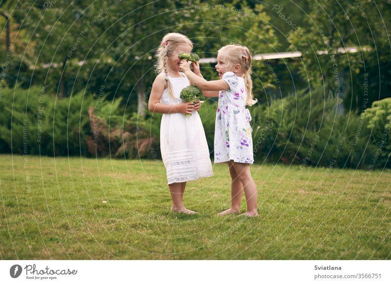 Zwei kleine Mädchen in Sarafans und Zöpfen in einem grünen Garten halten Brokkoli in ihren Händen. Sie schließen die Augen und lachen. Gesundes Ernährungskonzept, grünes vegetarisches Essen.