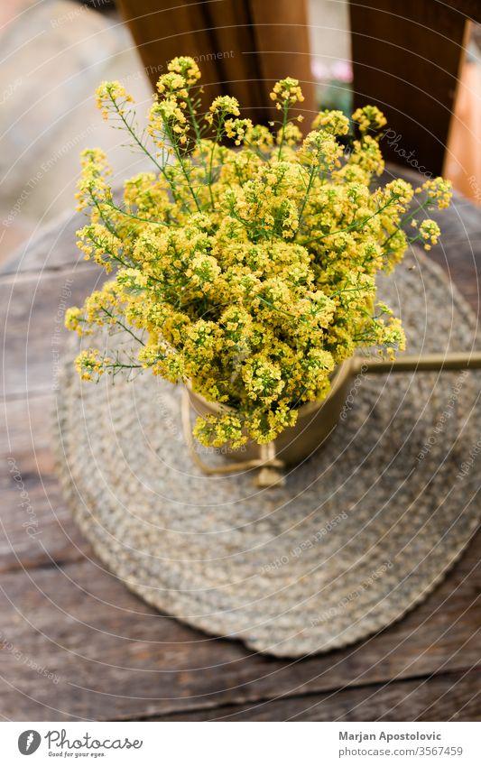 Schöne gelbe Wildblumen auf dem Holztisch im Hinterhof Ordnung Hintergrund schön Schönheit Blütezeit Überstrahlung Botanik Blumenstrauß Haufen Nahaufnahme Farbe