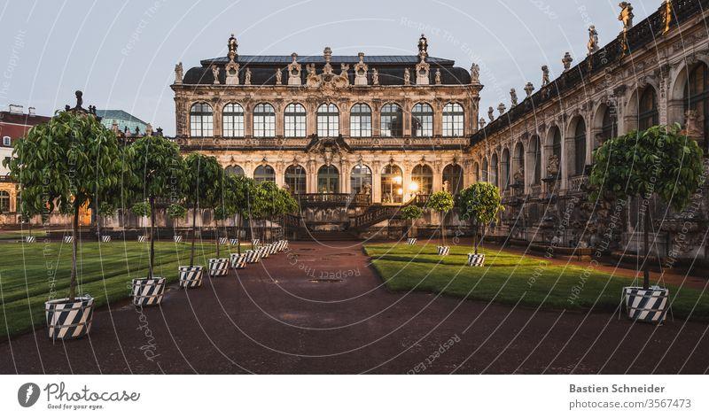 Die Orangenbäume am Dresdner Zwinger sind wieder da. Sie stehen für Wohlstand. Altstadt Dresden Sachsen historisch Kultur Stadt Sehenswürdigkeit Deutschland