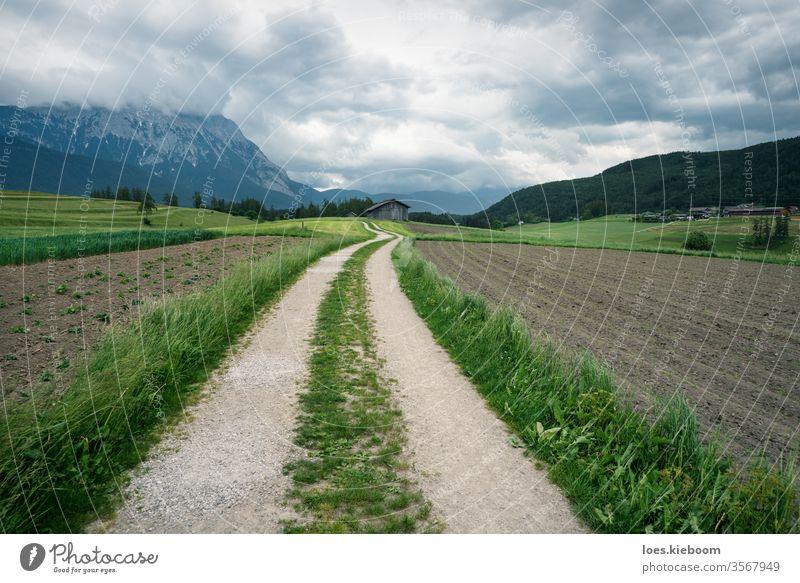 Gewundener Weg durch Ackerland mit österreichischen Alpen, Mieminger Plateau, Tirol, Österreich Ackerbau Bauernhof Landschaft ökologisch tirol Feld regional
