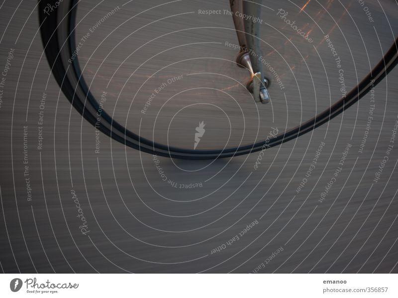 auf schmalen Reifen Ferien & Urlaub & Reisen Freude Straße Sport Wege & Pfade grau Fahrrad Verkehr Geschwindigkeit Ausflug weich Fitness rund fahren Fahrradfahren Asphalt