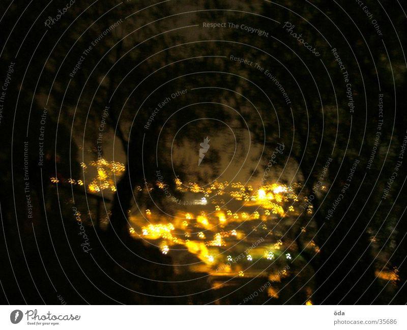 Arco at night #1 Baum Stadt Lichtermeer